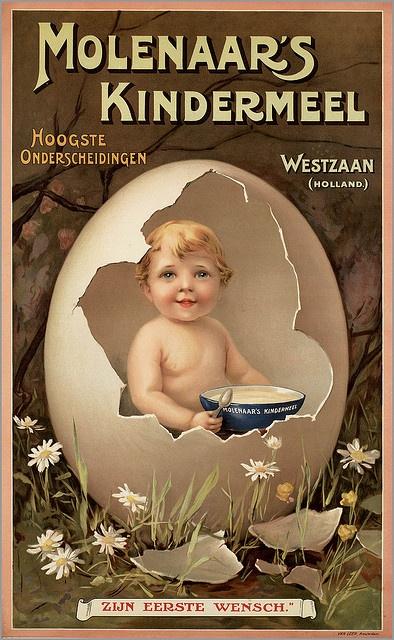 Molenaars Kindermeel Westzaan