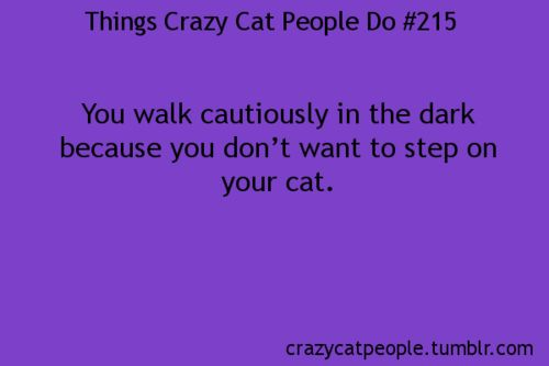 Yeah...especially when she is grey and likes to dart around so she can trip people...she's a sneaky one....