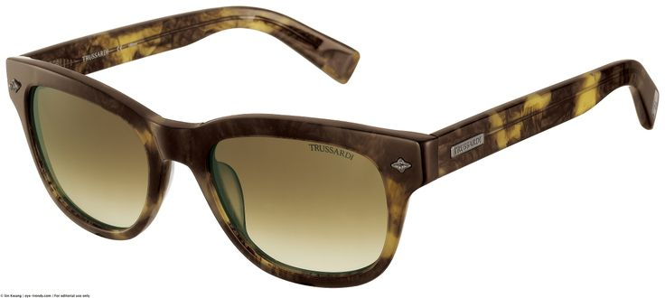 sunglasses 2014 | Browse: Home » Trussardi Men's Sunglasses 2014