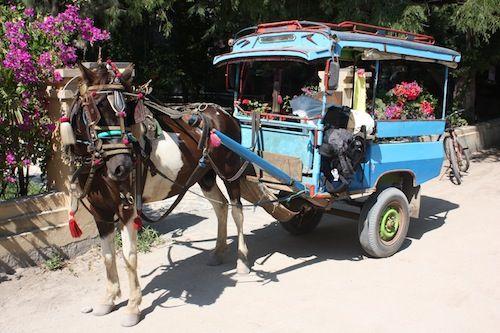 Cidomos local horse carts on Gili Trawangan Indonesia
