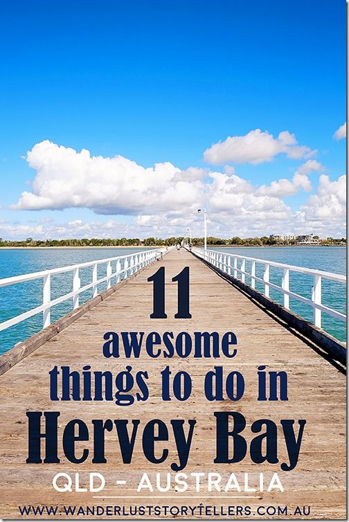 Things to do in Hervey Bay, QLD, Australia