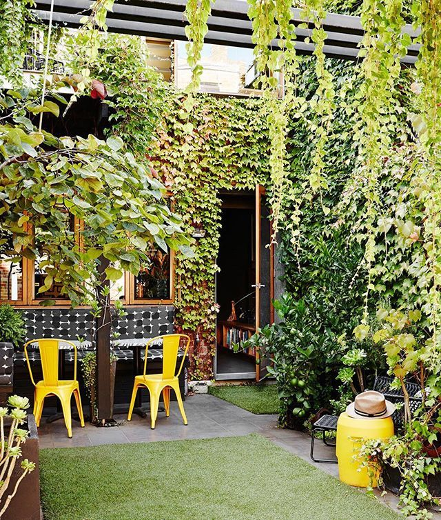 Love this beautiful snap from the North Melbourne home of interior designer Amanda Lynn as seen on TDF today - Amanda's sweet courtyard garden is a lush inner city oasis. Shots by @annetteobrien - link to full story in profile