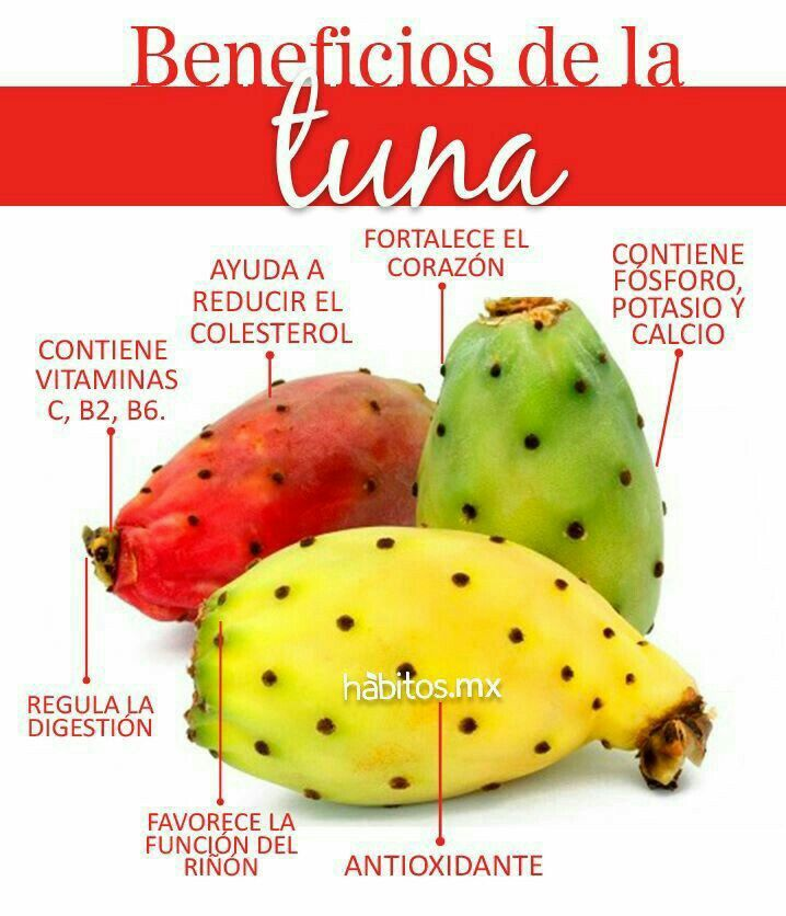 Beneficios de la tuna....