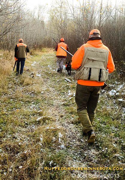 Ruffed Grouse hunting in Minnesota
