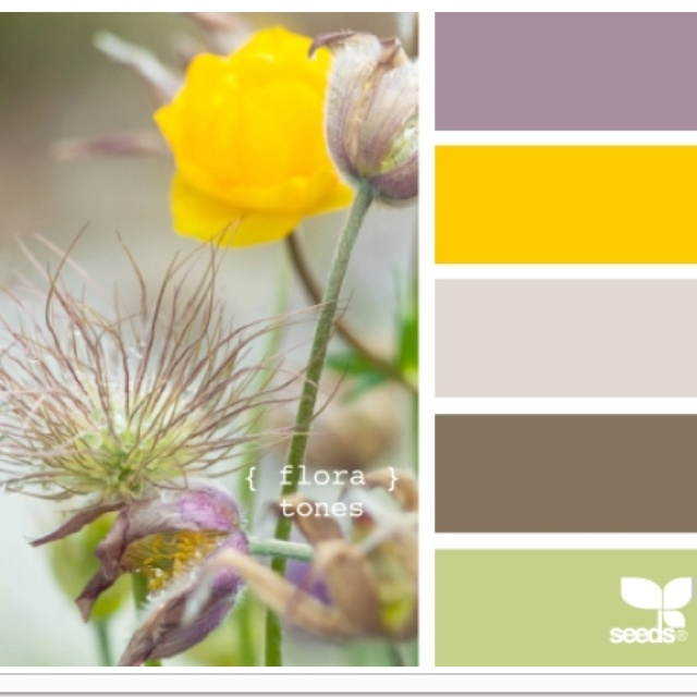 Other possibility for purple and the yellow...