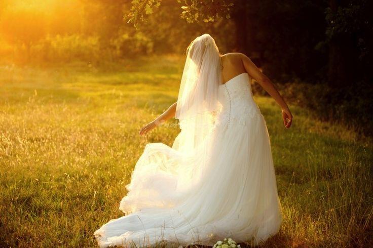 La data c'è. Ora bisogna decidere il tema del matrimonio per dare il via ai…