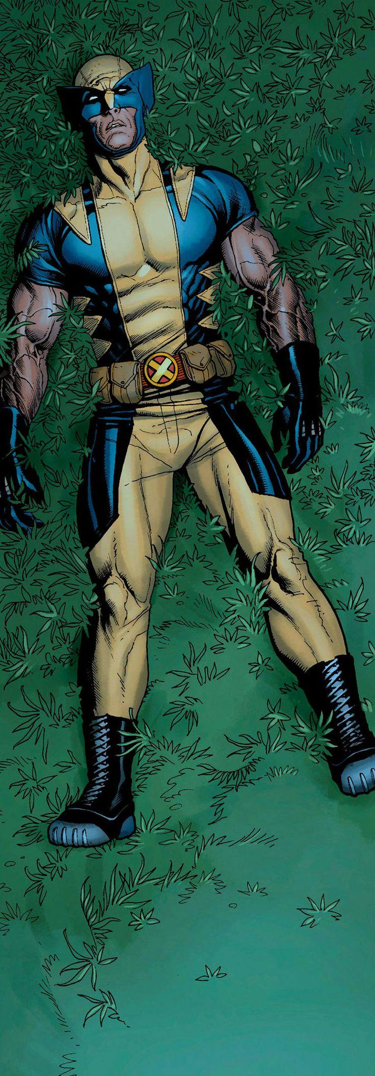 Wolverine by Frank Cho - #art #comics #comicbooks #superheroes