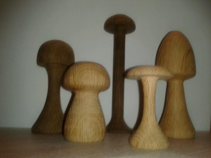 Mushrooms in oak tree