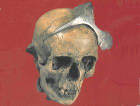 Cutrua de El Argar. 2º Milenio A.C. Cráneo femenino con diadema de plata procedente de la tumba 62 de El Argar (Mariën y Ulrix-Closset 1985: fig. 80)