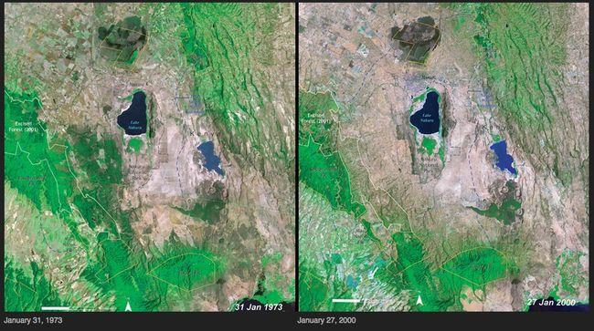11 Desforestación- Kenia