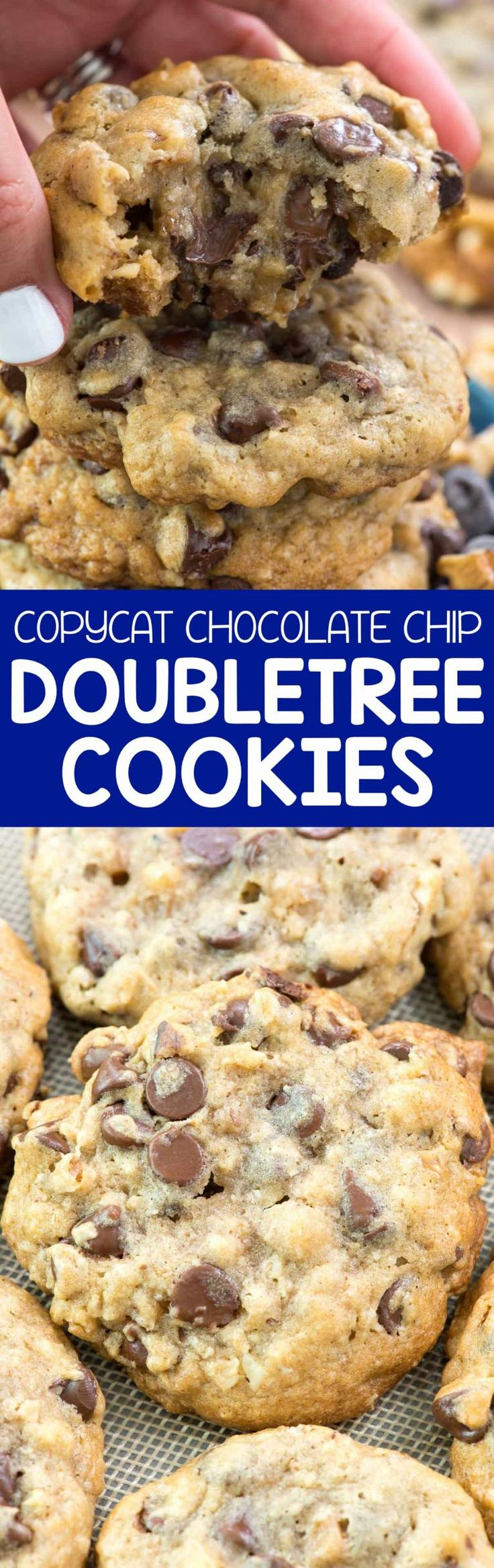 This chocolate chip cookie recipe is even BETTER than the Doubletree Chocolate Chip Cookies!! It's gooey and full of chocolate, oats, and walnuts.