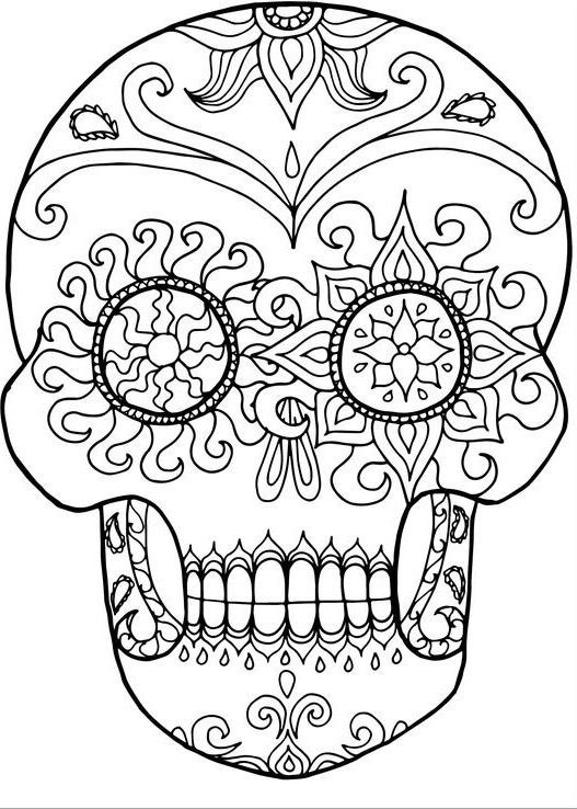 1400 adult coloring pages  malvorlage eule kostenlose