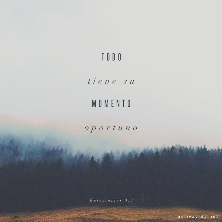 Eclesiastés 3:1 Todo tiene su tiempo, y todo lo que se quiere debajo del cielo tiene su hora.