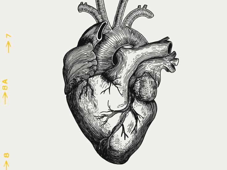 Z   heartbeat 04b