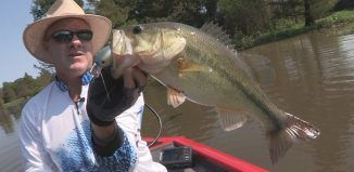 Try Out Some Of This Great Bass Fishing Advice