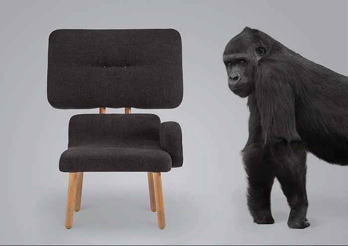 Animal inspired furniture
