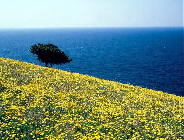Naxos island -Greece.