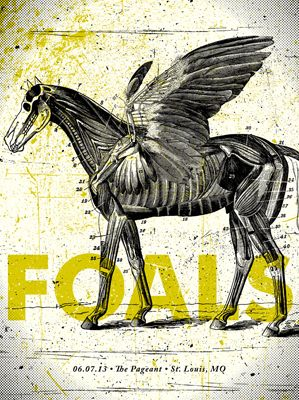 Foals by by Subject Matter Studio