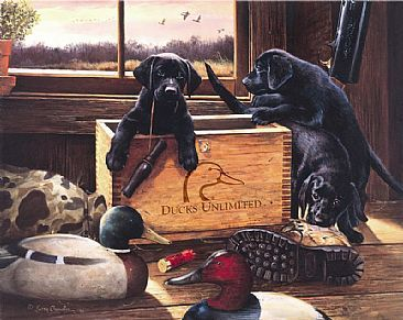 ducks unlimited labrador pictures | Black Lab Puppies - Painting - Nature Art by Larry Chandler