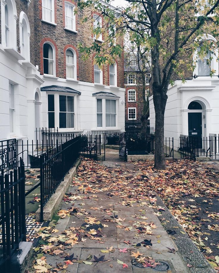 A leafy corner of #Chelsea by @katya_jackson  // #thisislondon #londoninautumn ❤️ (at Chelsea, London)