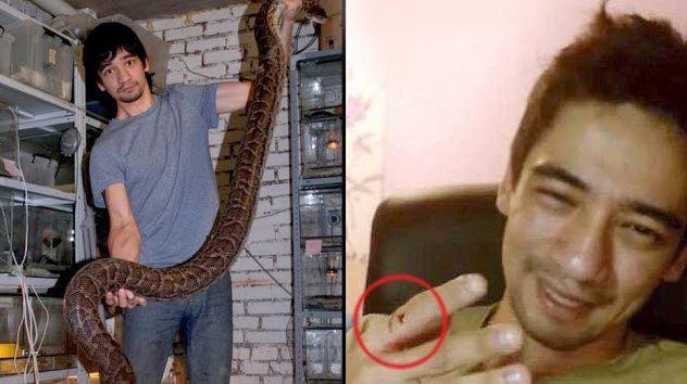 10 Horrifying Tales Of Individuals Killed By Snakes