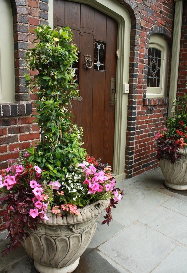 Front Door Summer Decorating Ideas | Front door planter for next summer, jasmine tree trellise