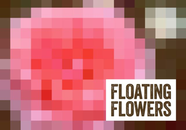 Floating Flowers & onderwijsproject Kunst, Natuurlijk : Grafisch Ontwerpstudio Beeldprikkels Zwolle | grafisch ontwerp | Zwolle | Marketing & Communicatiebureau | Grafisch Ontwerpbureau | Overijssel
