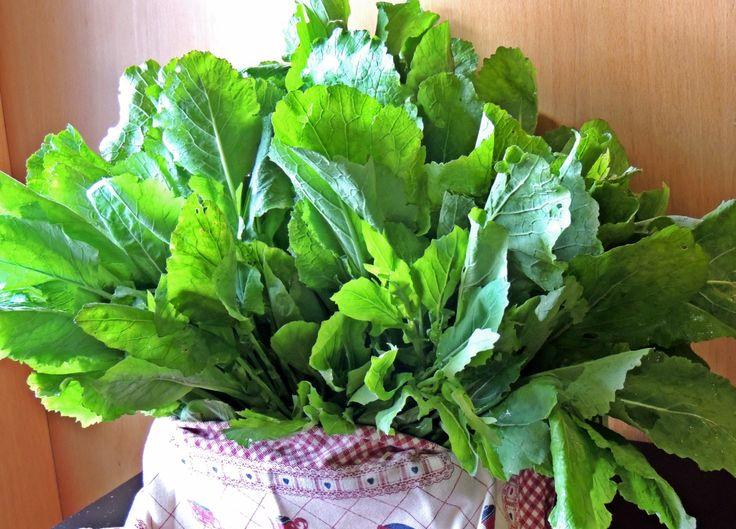 Así de frescos y de naturales son los ingredientes que utilizamos en El Cafetín. Estas verduras que lucen tan sanotas nos llegaron directamente de nuestra huerta familiar y fueron el acompañamiento perfecto a un  espectacular cocido gallego