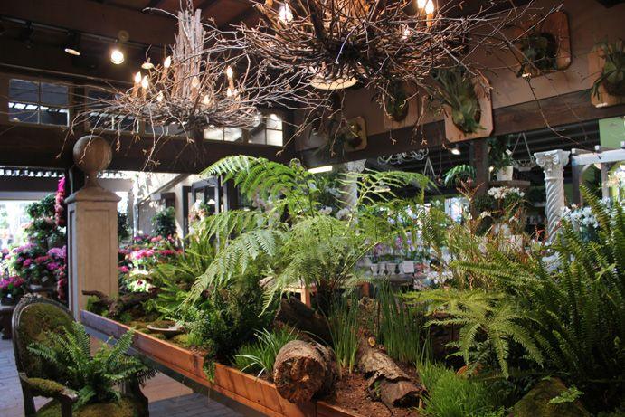 224 best Roger\'s Gardens images on Pinterest   Rogers gardens, Decor ...