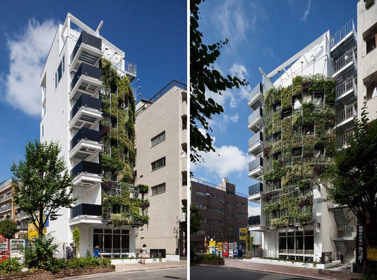 edward suzuki architects: vent vert