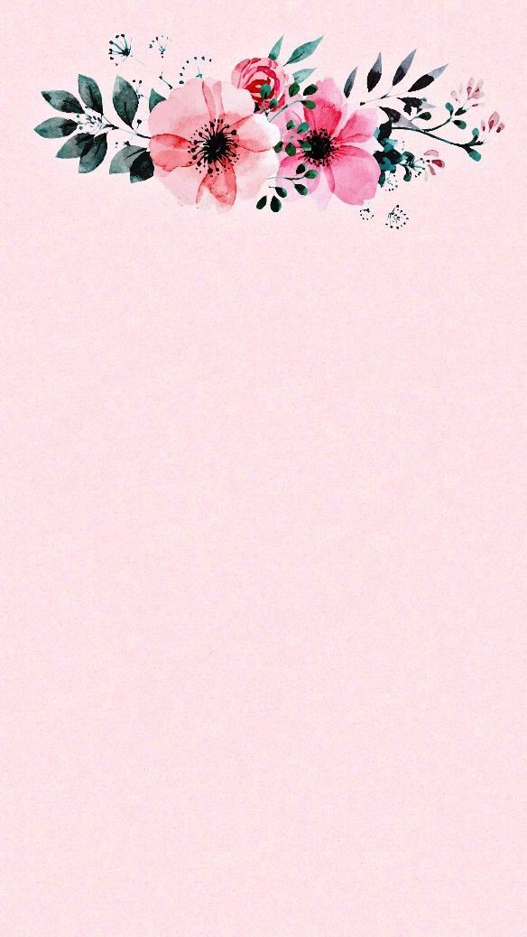 Iphone Wallpaper – Iphone Wallpaper – Rosa y flores