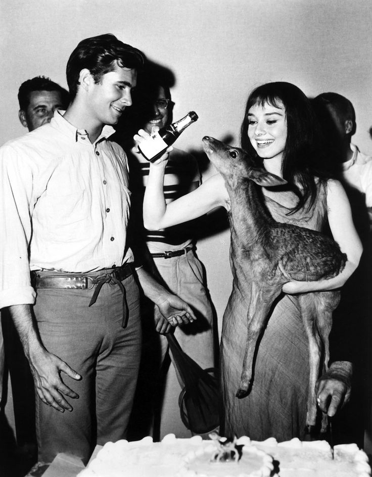 If Audrey's fawn is any indication, deer make awesome party companions. | Audrey Hepburn Had A Pet Deer Named Pippin