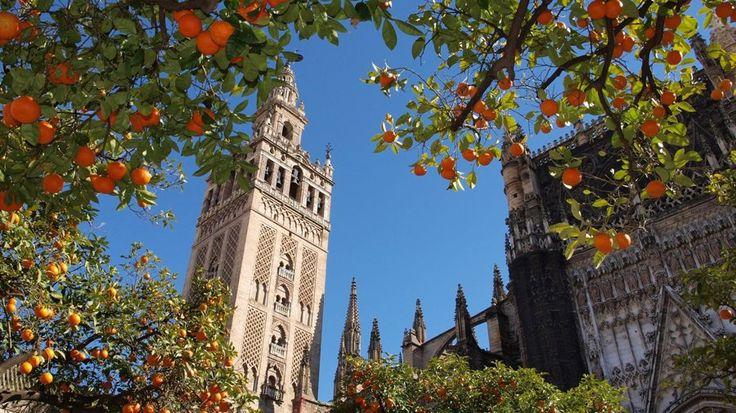 Языковая школа испанского языка Мозаика в Испании - Mosaico Сenter School #испанский #обучение #Испания #MosaicoСenterSchool #BellGroup  Обучение испанскому языку в Испании, в Андалусии это уникальный опыт. Студенты изучают испанский язык, а также знакомятся с культурой, историей, пейзажами и национальной кухней Испании.