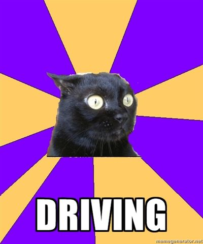 My thoughts on driving can be conveyed by the expression on Anxiety Cat's face