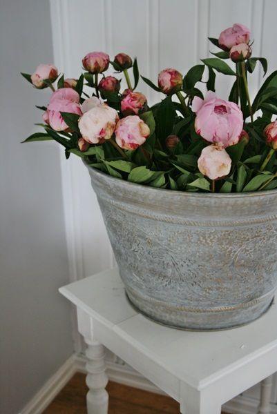 ❀sweet - zink met rose bloemen