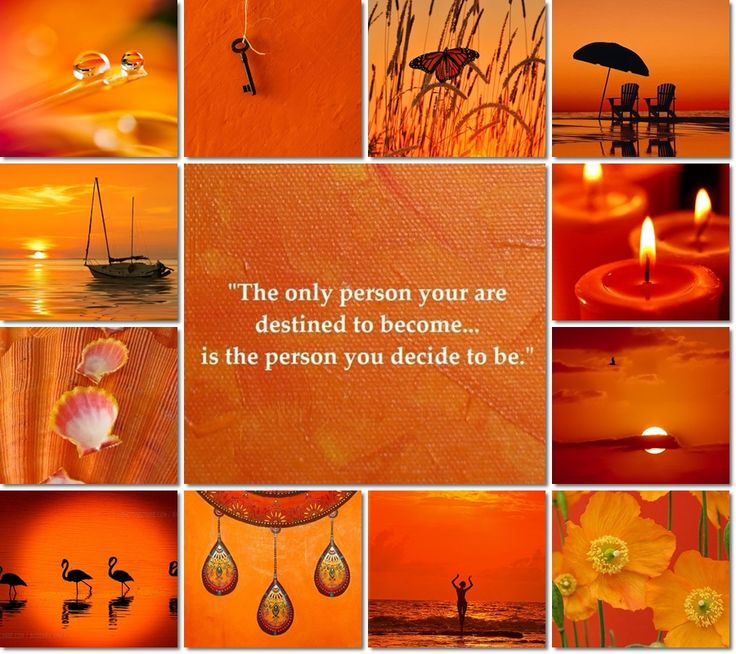moodboard orange by Audrey