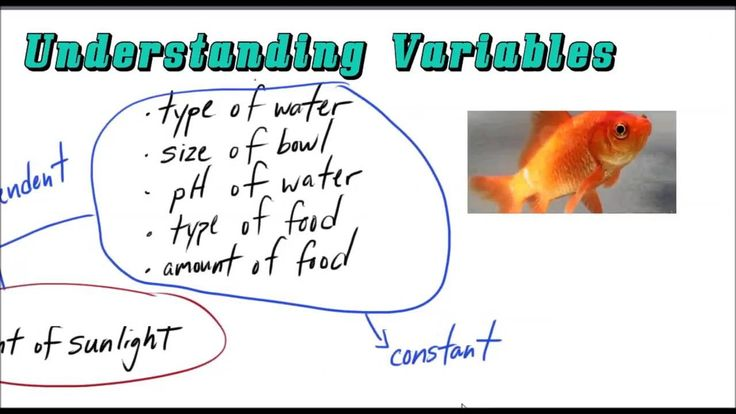 difference between independent and dependent variable pdf