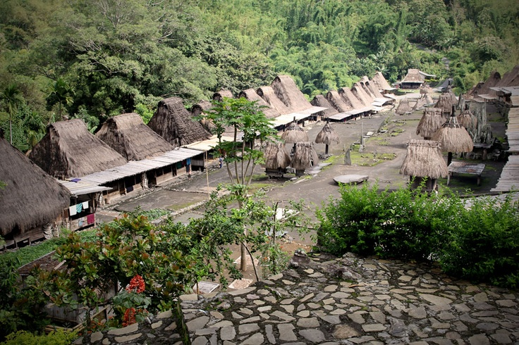 Bena sits in an area covering 375 meters long and 80 meters wide right on the slopes of Mt. Inerie (2,245 meters asl). Here, 9 different sub-ethnic groups live in 45 houses. The village is only 18 kilometers from Bajawa, the capital city of the district of Ngada.