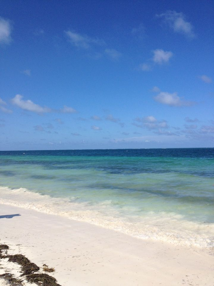14 best life in puerto morelos images on pinterest for Puerto morelos fishing