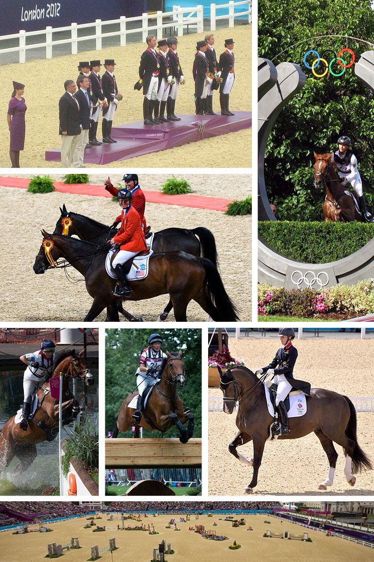 Olympic Gold Medalists from the 2012 and 2008 Equestrian Summer Olympics. Medalists from Dressage, Three Day Eventing and Show Jumping. Celebrating the excitement and prestige of the 2016 Summer Olympics in Rio.