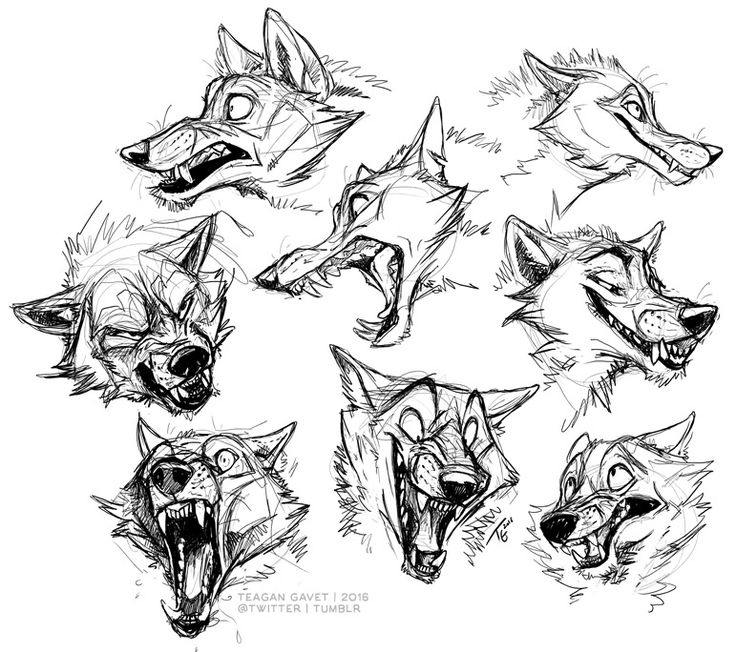 Zoned out last night and drew a bunch of teeth with wolves attached to them.