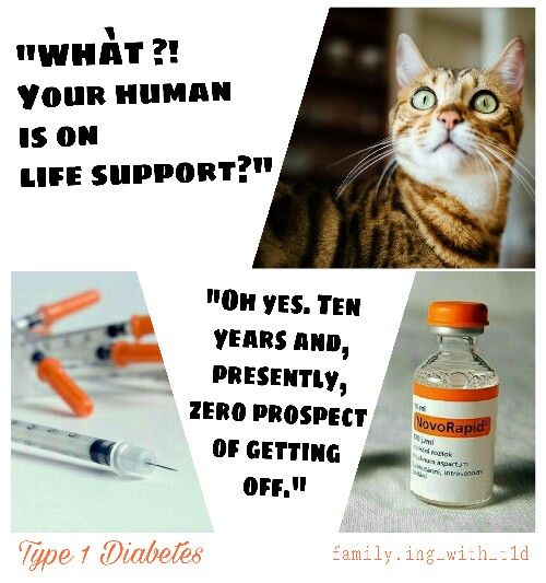 Insulin is not a cure. It is LIFE SUPPORT for a person with Type 1 Diabetes.