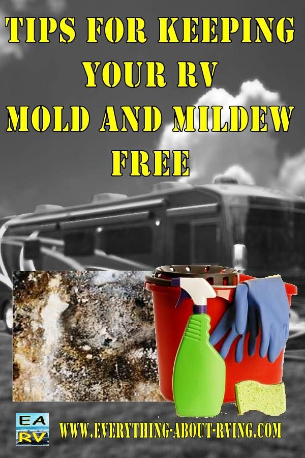 Tips for Keeping Your RV Mold and Mildew Free.