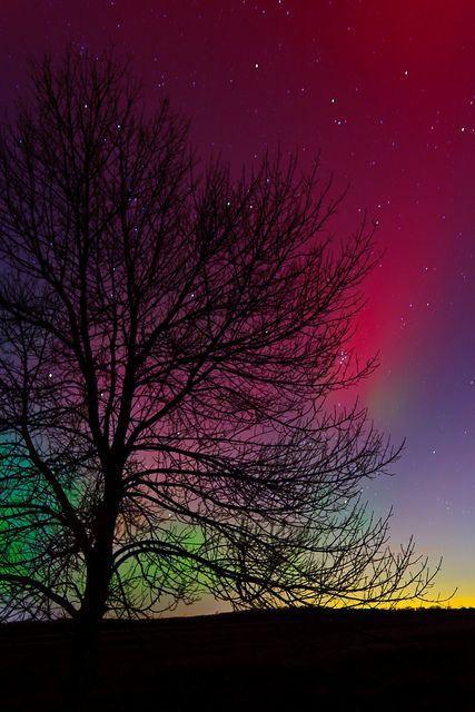 Aurora over Woolwich, Ontario, Canada