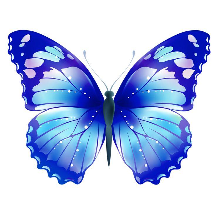 Картинки, бабочки анимация