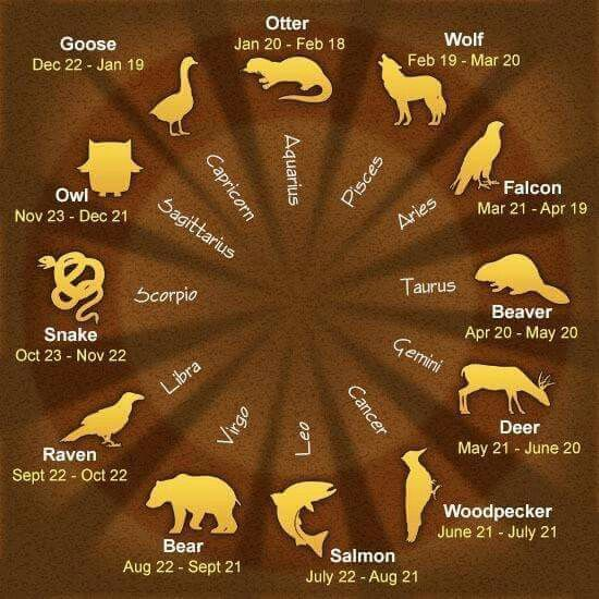 astrological chart in hindi