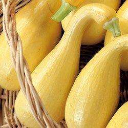 Stuffed Yellow Squash   Tasty Kitchen: A Happy Recipe Community!