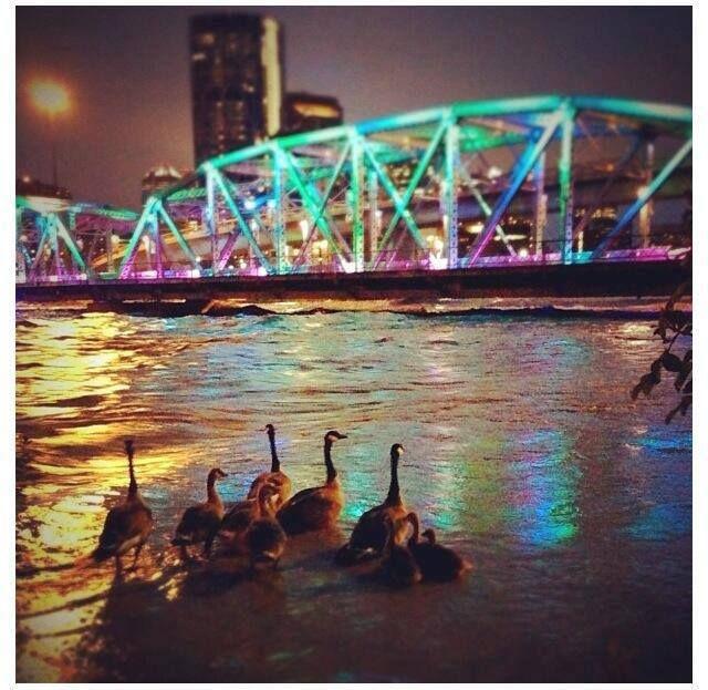 Calgary Flood.2013
