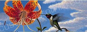 Day Lily and Hummingbird Rear Window Graphic