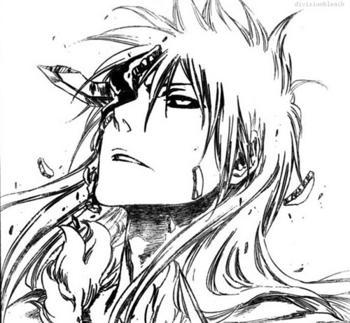 2096 Best Images About Bleach On Pinterest